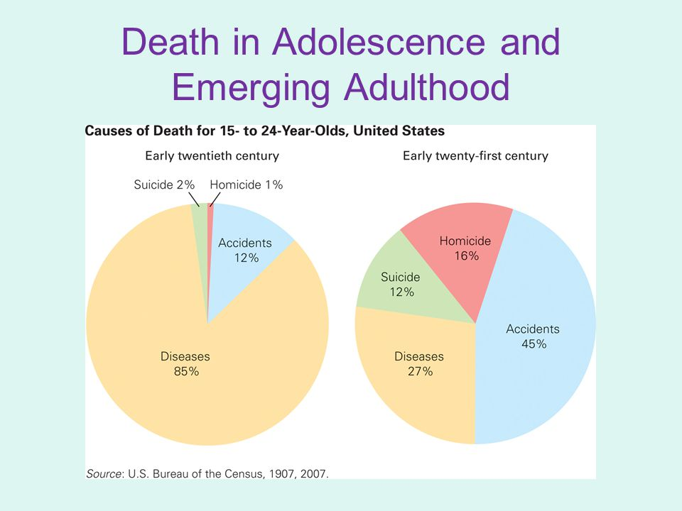 Death in Adulthood When adults become responsible for work and family, death is to be avoided or at least postponed.