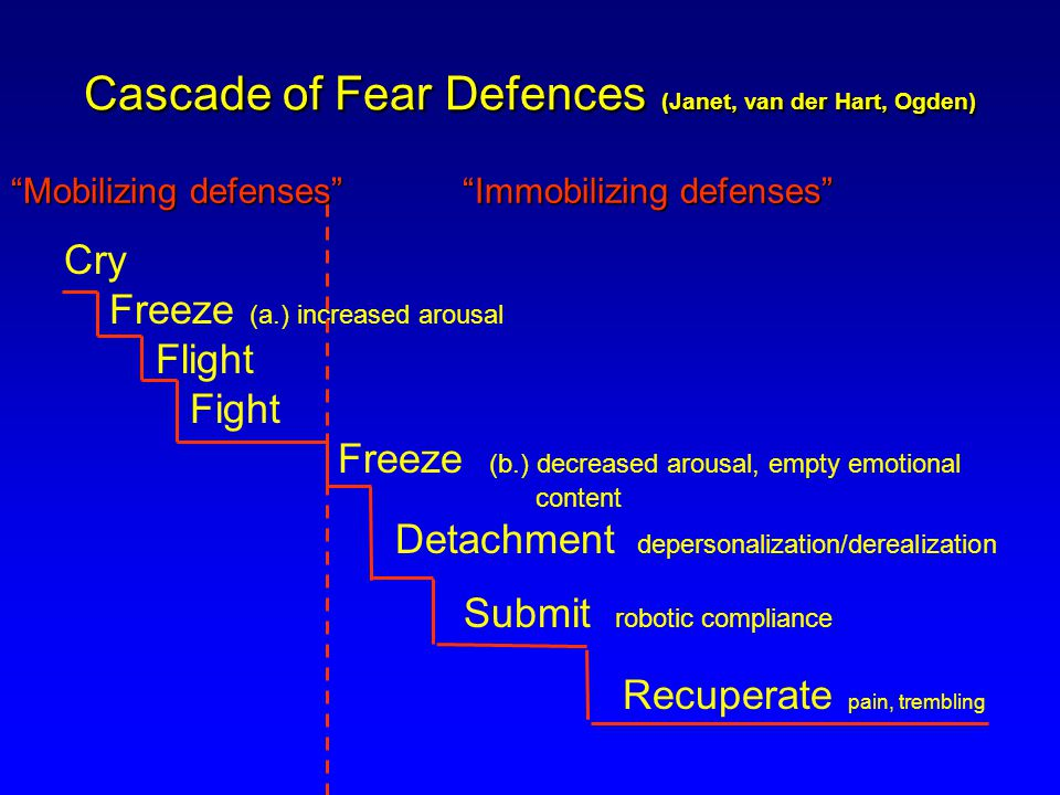Cascade of Fear Defences (Janet, van der Hart, Ogden) Cry Freeze (a.) increased arousal Flight Fight Freeze (b.) decreased arousal, empty emotional content Detachment depersonalization/derealization Submit robotic compliance Recuperate pain, trembling Mobilizing defenses Immobilizing defenses