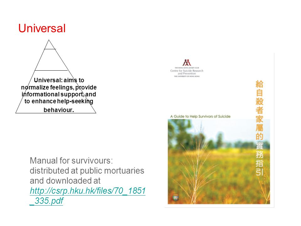 Universal Manual for survivours: distributed at public mortuaries and downloaded at http://csrp.hku.hk/files/70_1851 _335.pdf http://csrp.hku.hk/files/70_1851 _335.pdf Universal: aims to normalize feelings, provide informational support, and to enhance help-seeking behaviour.