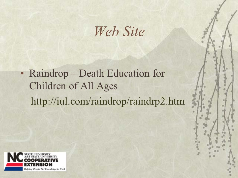 Web Site Raindrop – Death Education for Children of All Ages http://iul.com/raindrop/raindrp2.htm