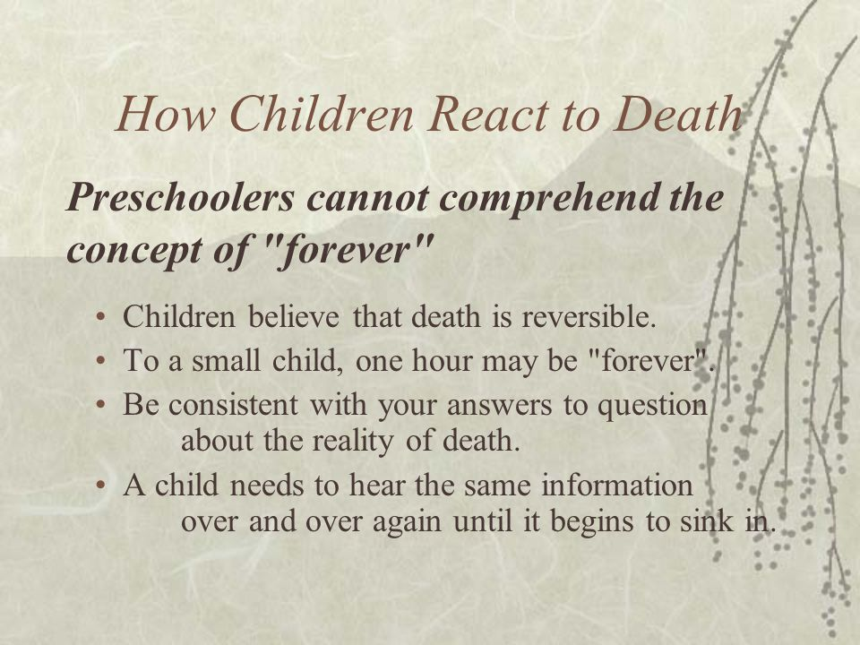 How Children React to Death Children believe that death is reversible. To a small child, one hour may be