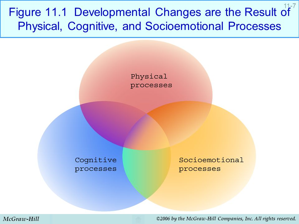 McGraw-Hill ©2006 by the McGraw-Hill Companies, Inc. All rights reserved. 11-7 Figure 11.1 Developmental Changes are the Result of Physical, Cognitive