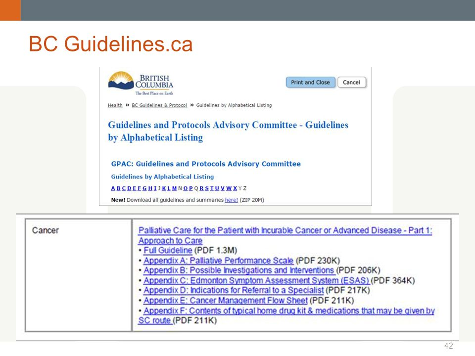 42 BC Guidelines.ca
