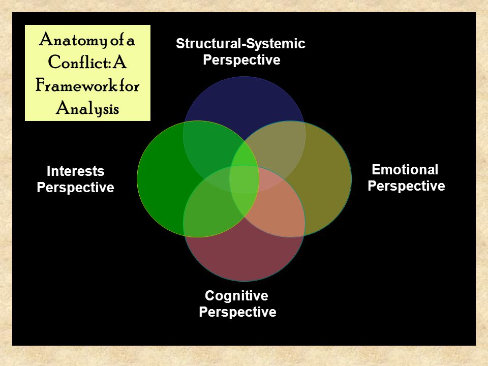 Structural-Systemic Perspective Emotional Perspective Cognitive Perspective Interests Perspective Anatomy of a Conflict: A Framework for Analysis