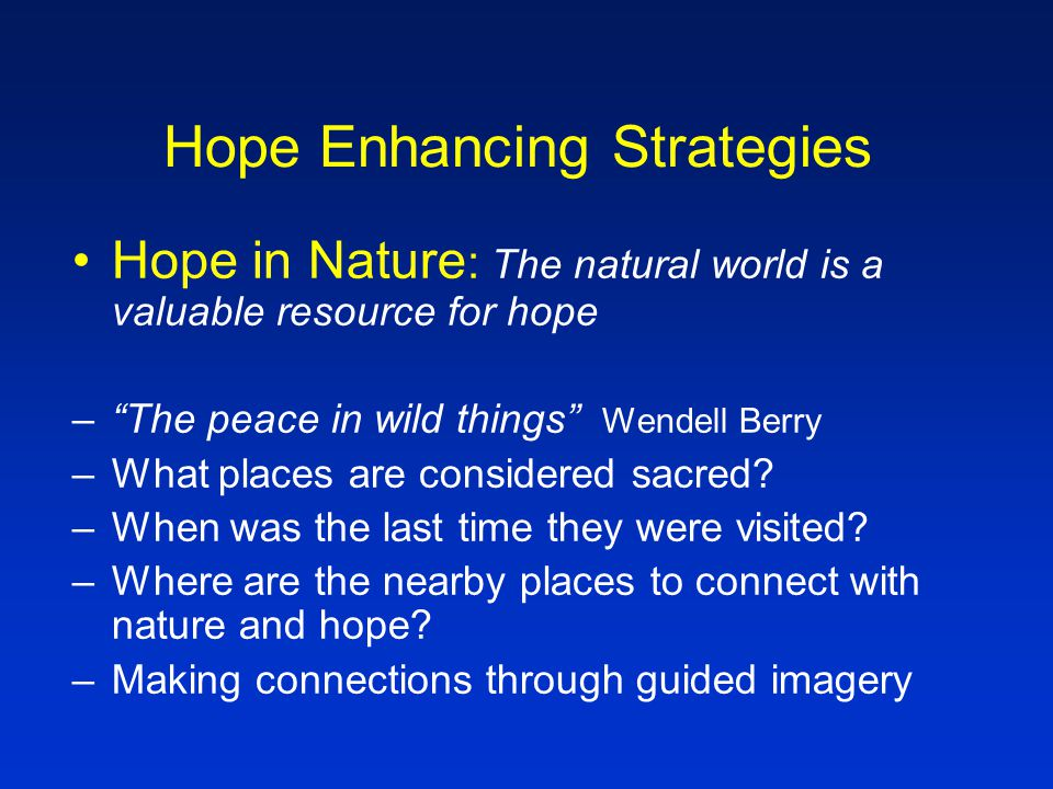Hope Enhancing Strategies Hope in the Present Moment: live as fully as possible in the moment –Mindfulness (meditation, contemplative prayer, guided imagery, body work, energy work, yoga, accupuncture, massage, reiki, therapeutic touch, etc.) –Create space that encourages being in the moment –Readiness for the unplanned or spontaneous –Seize moments!