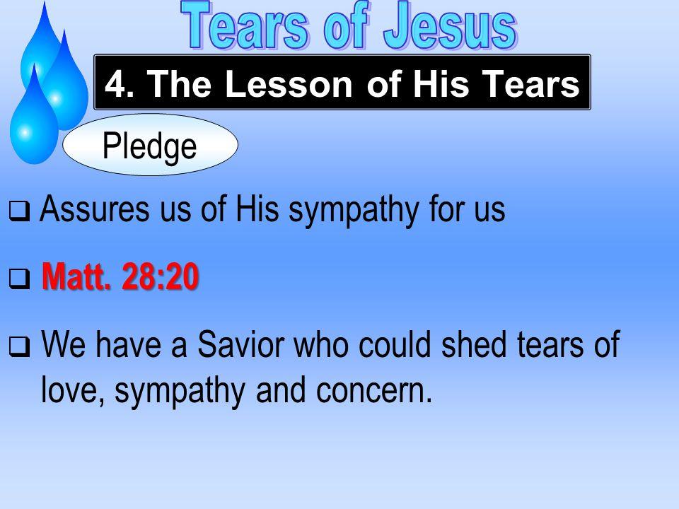  Assures us of His sympathy for us Matt. 28:20  Matt.