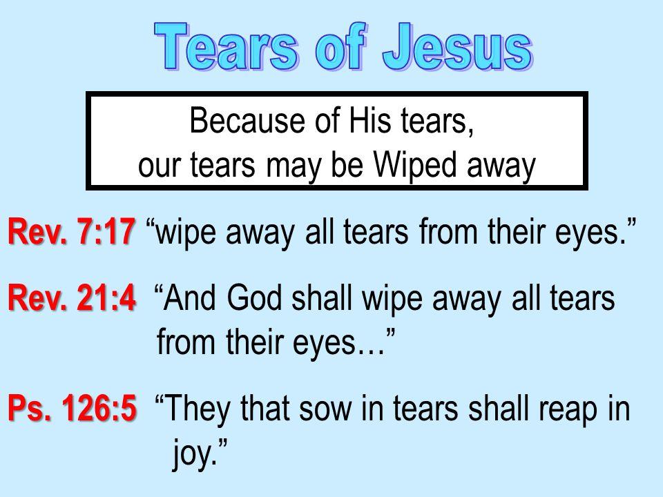 Rev. 7:17 Rev. 7:17 wipe away all tears from their eyes. Rev.