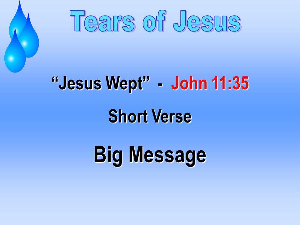 Jesus Wept - John 11:35 Short Verse Big Message