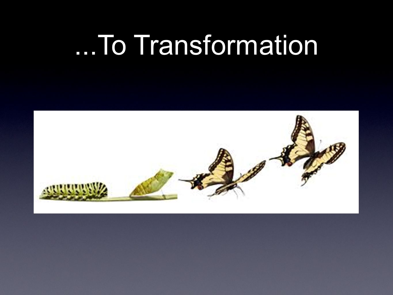 ...To Transformation