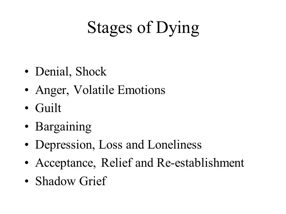 Stages of Dying Denial, Shock Anger, Volatile Emotions Guilt Bargaining Depression, Loss and Loneliness Acceptance, Relief and Re-establishment Shadow