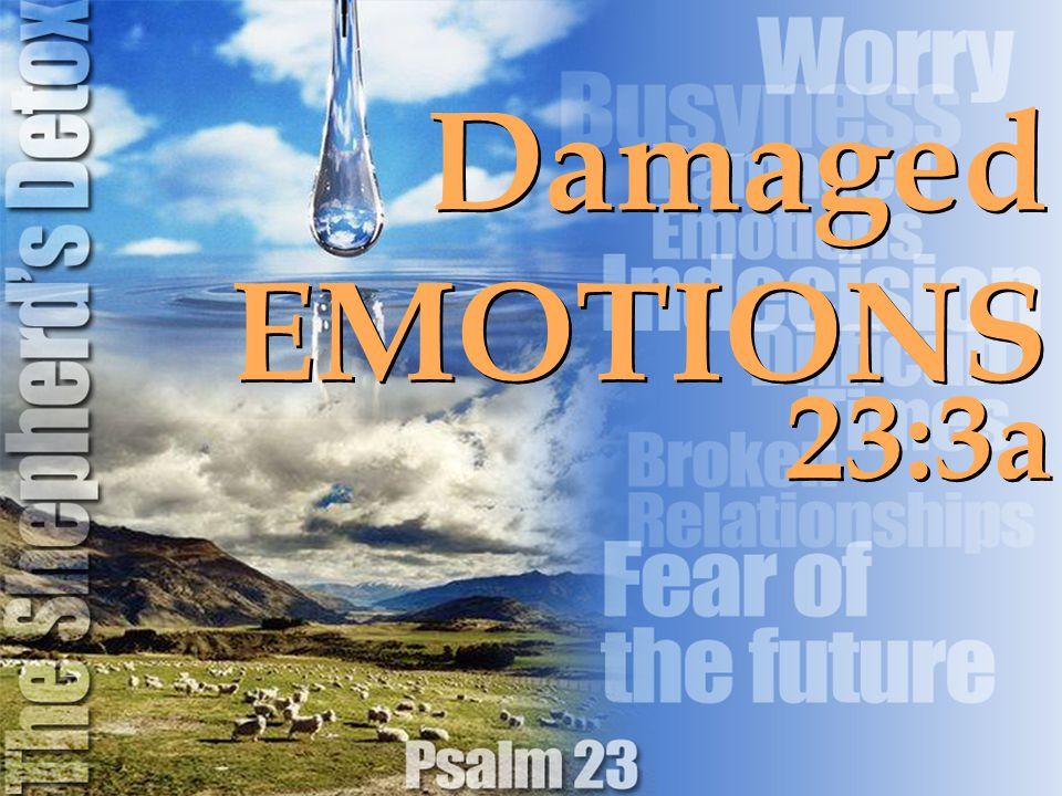 23:3a Damaged EMOTIONS Damaged EMOTIONS