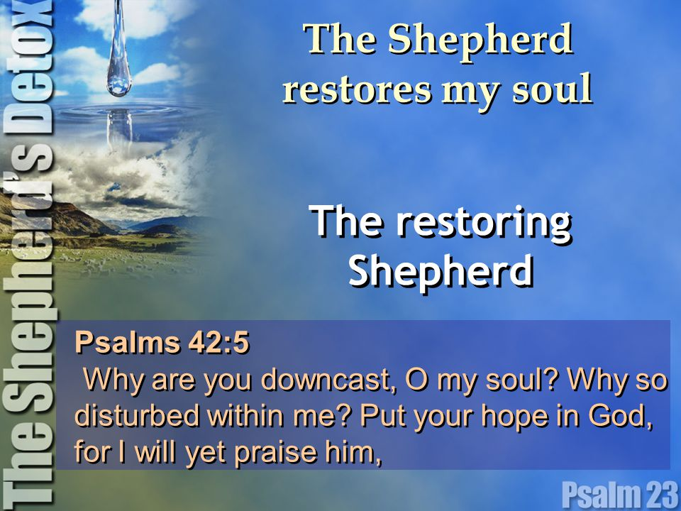 The Shepherd restores my soul The restoring Shepherd Psalms 42:5 Why are you downcast, O my soul.