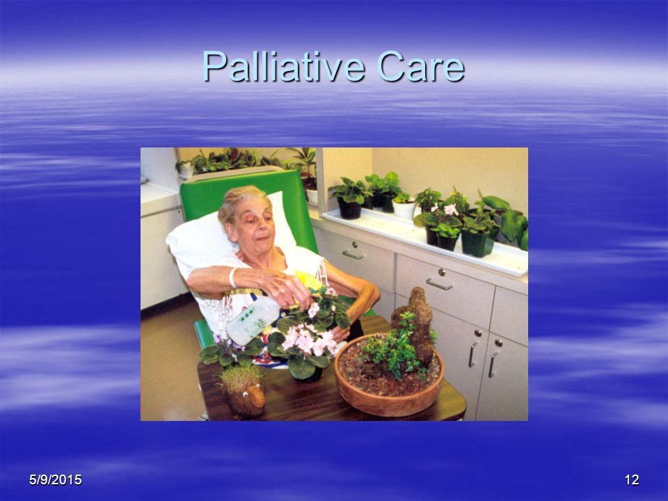 5/9/201512 Palliative Care