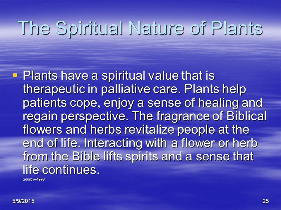 5/9/201525 The Spiritual Nature of Plants  Plants have a spiritual value that is therapeutic in palliative care.