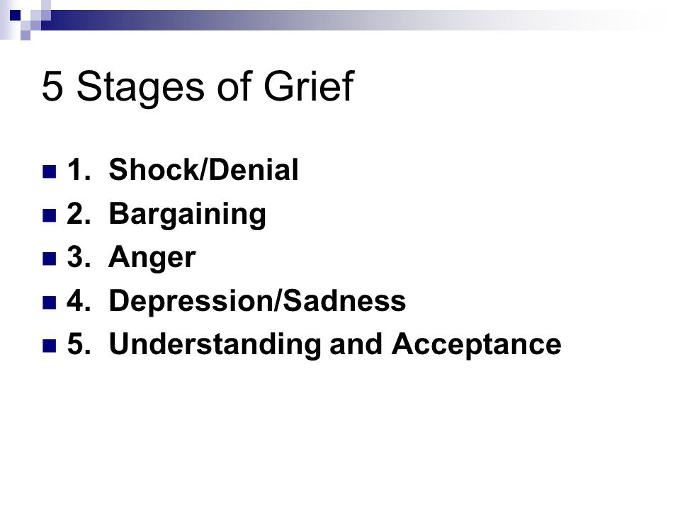 5 Stages of Grief 1. Shock/Denial 2. Bargaining 3.