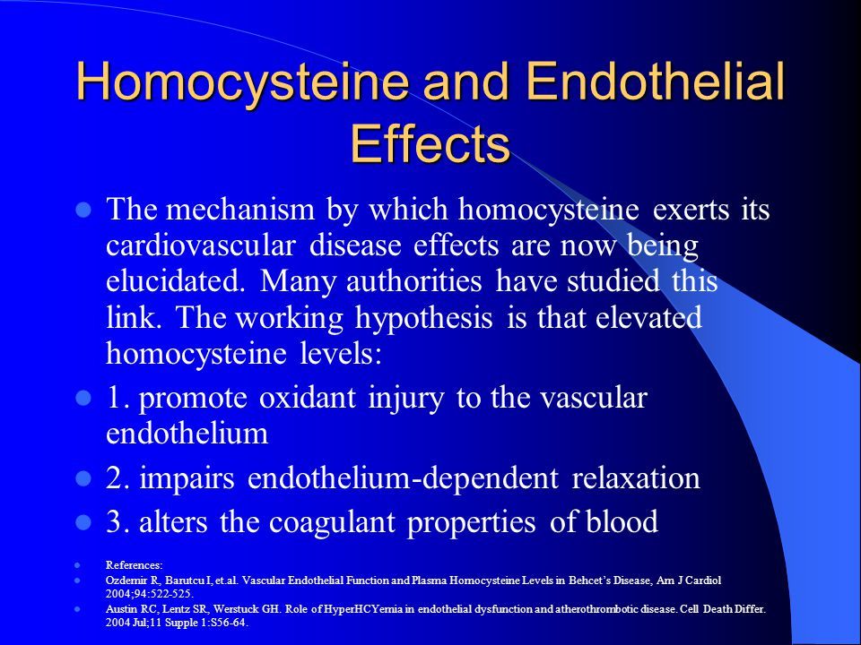Homocysteine and Endothelial Effects The mechanism by which homocysteine exerts its cardiovascular disease effects are now being elucidated. Many auth