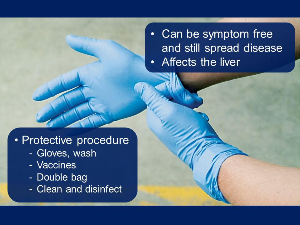 Can be symptom free and still spread disease Affects the liver Protective procedure -Gloves, wash -Vaccines -Double bag -Clean and disinfect