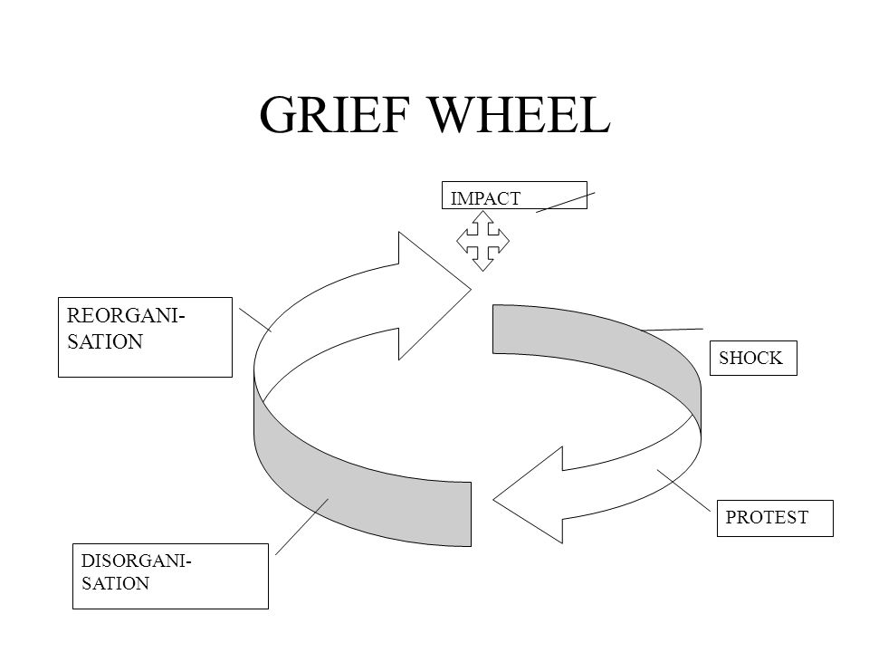 GRIEF WHEEL IMPACT SHOCK PROTEST DISORGANI- SATION REORGANI- SATION