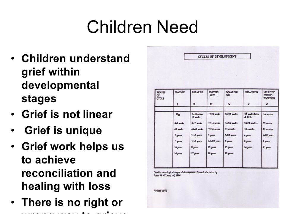 Children Need Children understand grief within developmental stages Grief is not linear Grief is unique Grief work helps us to achieve reconciliation and healing with loss There is no right or wrong way to grieve
