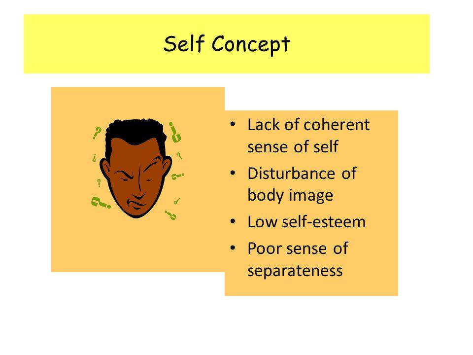 Self Concept Lack of coherent sense of self Disturbance of body image Low self-esteem Poor sense of separateness