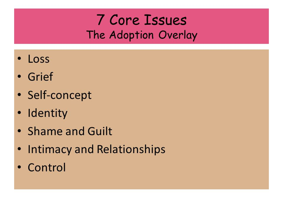 7 Core Issues The Adoption Overlay Loss Grief Self-concept Identity Shame and Guilt Intimacy and Relationships Control