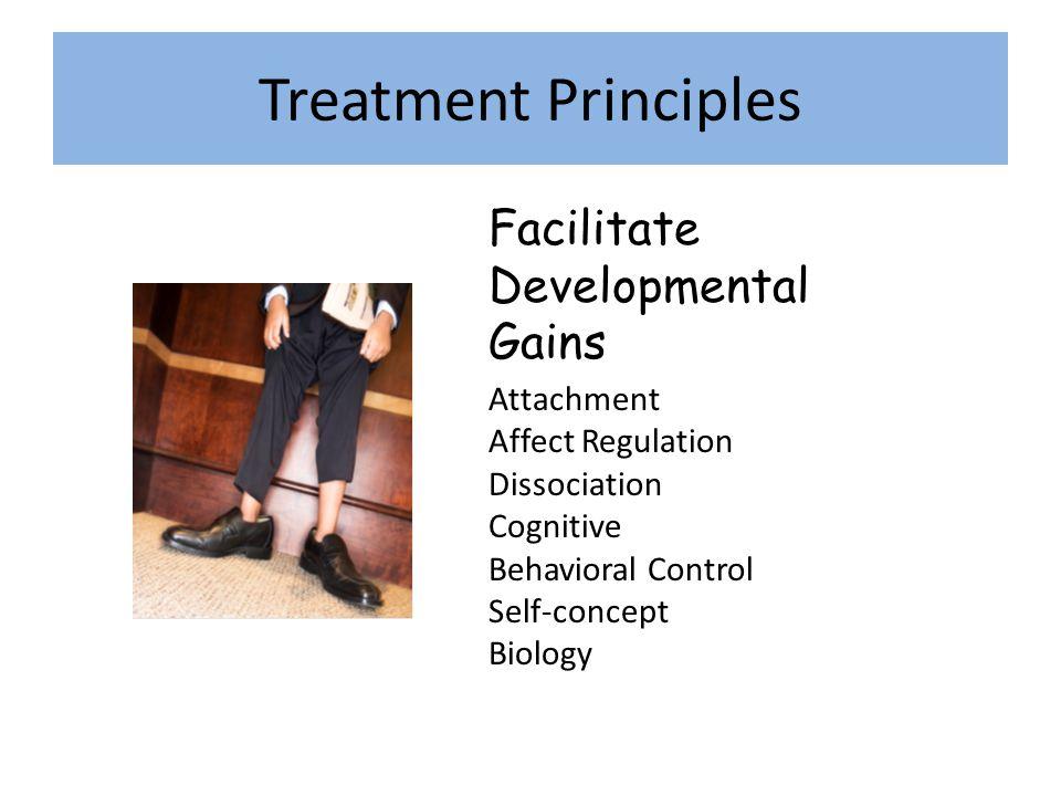 Treatment Principles Facilitate Developmental Gains Attachment Affect Regulation Dissociation Cognitive Behavioral Control Self-concept Biology