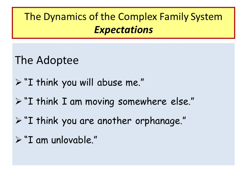 """The Adoptee  """"I think you will abuse me.""""  """"I think I am moving somewhere else.""""  """"I think you are another orphanage.""""  """"I am unlovable."""" The Dyna"""
