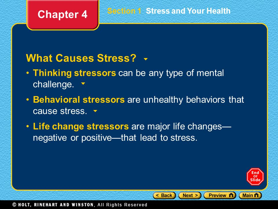 Section 1 Stress and Your Health What Causes Stress.