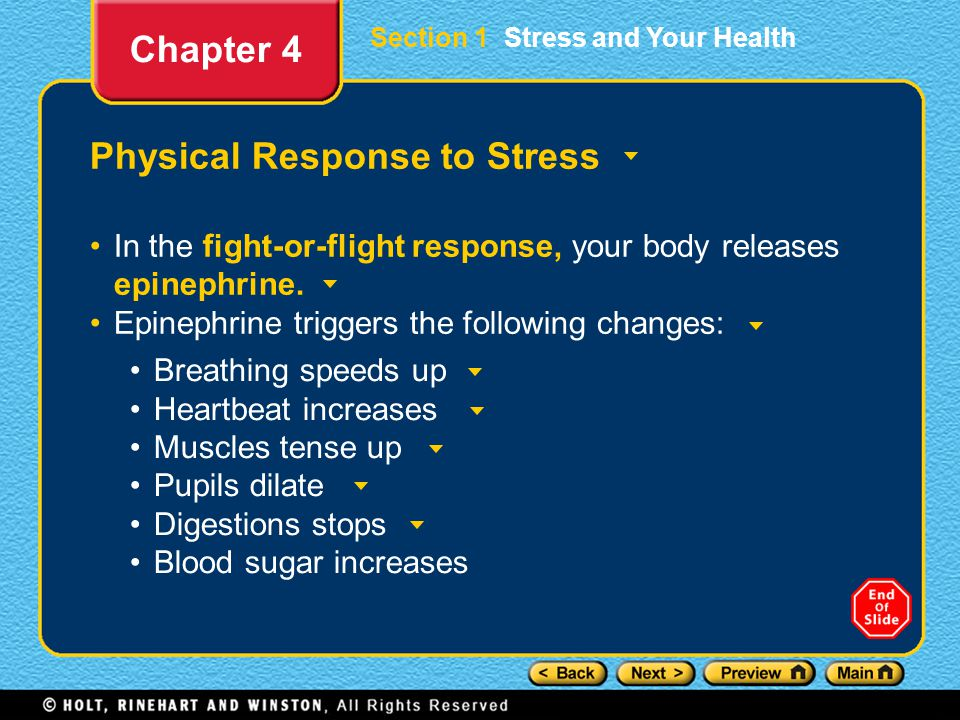 Section 1 Stress and Your Health Physical Response to Stress In the fight-or-flight response, your body releases epinephrine.