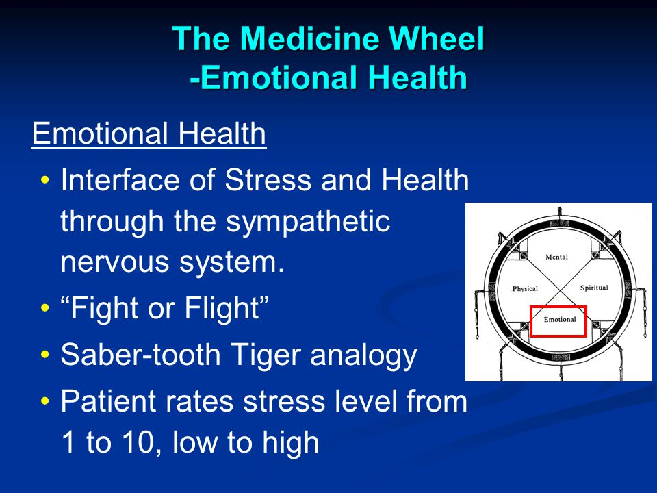 The Medicine Wheel -Emotional Health Emotional Health Interface of Stress and Health through the sympathetic nervous system.