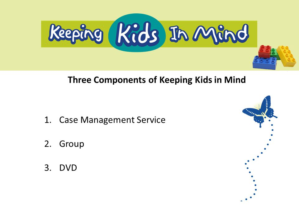 Three Components of Keeping Kids in Mind 1.Case Management Service 2.Group 3.DVD