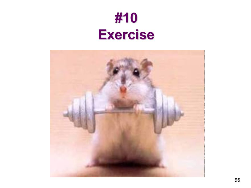 #10 Exercise 56