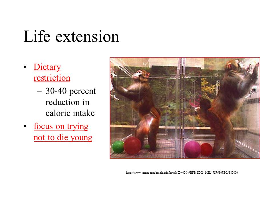 Life extension Dietary restrictionDietary restriction –30-40 percent reduction in caloric intake focus on trying not to die youngfocus on trying not to die young http://www.sciam.com/article.cfm articleID=00049BFB-3D03-1CE5-93F6809EC5880000