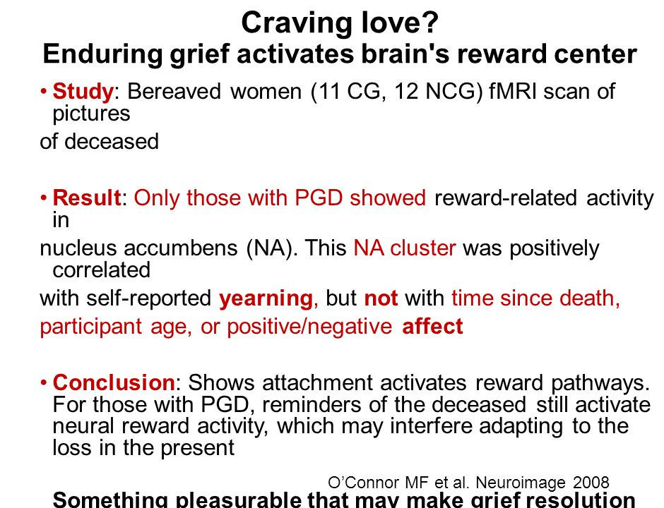 Craving love? Enduring grief activates brain's reward center Study: Bereaved women (11 CG, 12 NCG) fMRI scan of pictures of deceased Result: Only thos
