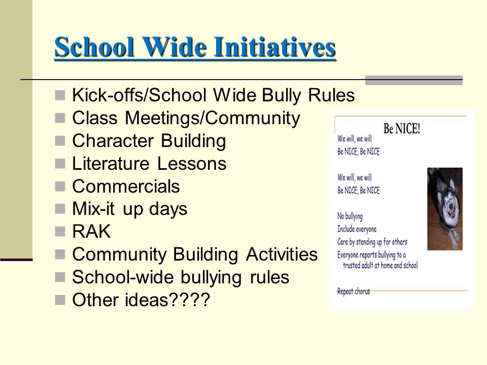 School Wide Initiatives Kick-offs/School Wide Bully Rules Class Meetings/Community Character Building Literature Lessons Commercials Mix-it up days RAK Community Building Activities School-wide bullying rules Other ideas????