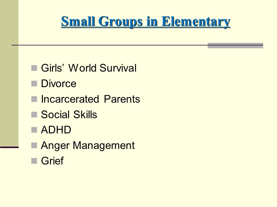 Small Groups in Elementary Girls' World Survival Divorce Incarcerated Parents Social Skills ADHD Anger Management Grief