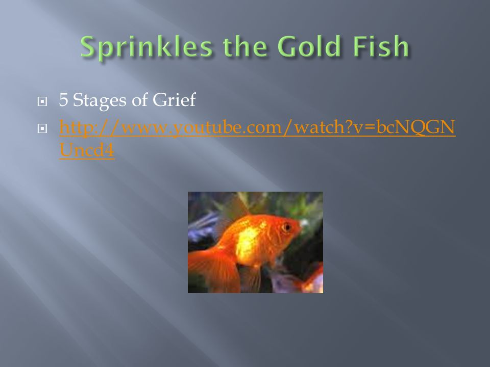 5 Stages of Grief  http://www.youtube.com/watch?v=bcNQGN Uncd4 http://www.youtube.com/watch?v=bcNQGN Uncd4