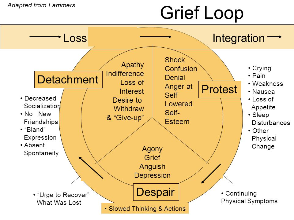 Grief Loop Loss Integration Shock Confusion Denial Anger at Self Lowered Self- Esteem Agony Grief Anguish Depression Apathy Indifference Loss of Inter