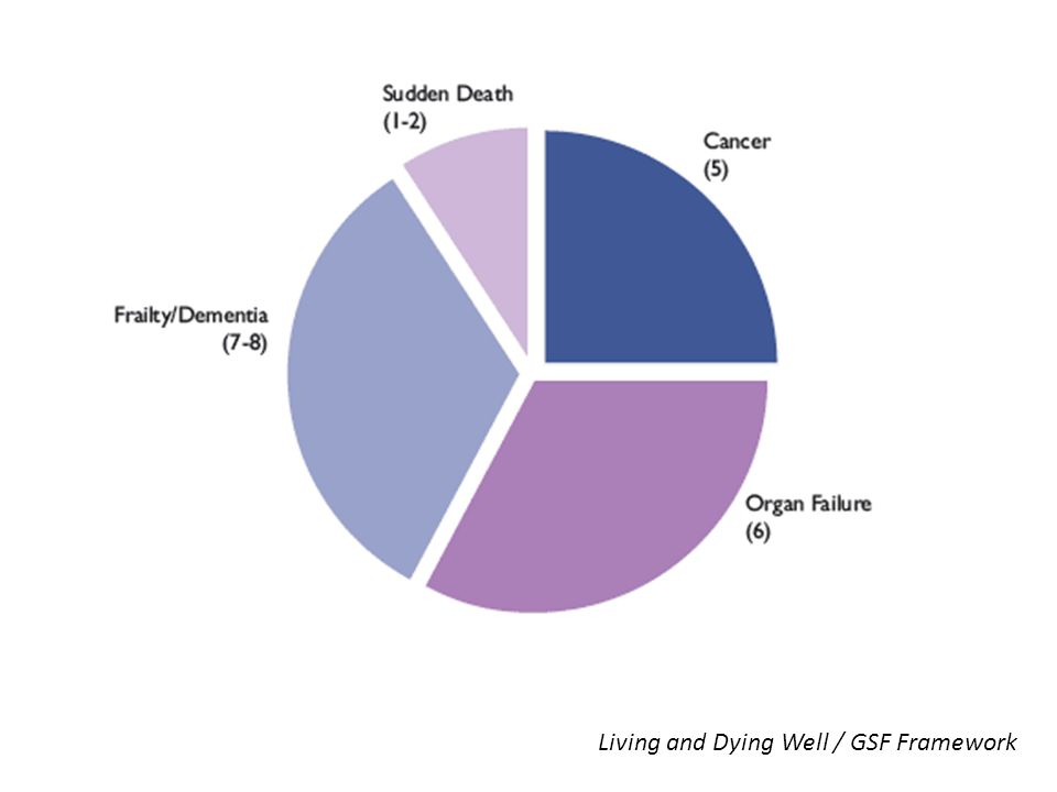 Living and Dying Well / GSF Framework