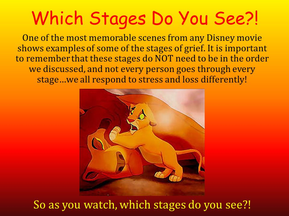 Which Stages Do You See?.