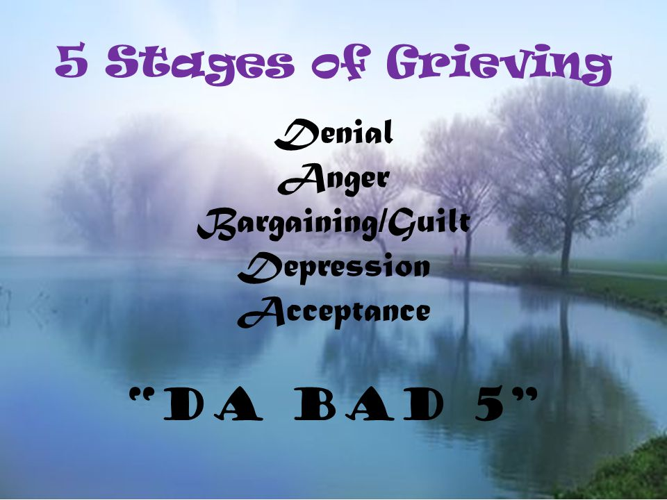 5 Stages of Grieving Denial Anger Bargaining/Guilt Depression Acceptance DA BAD 5