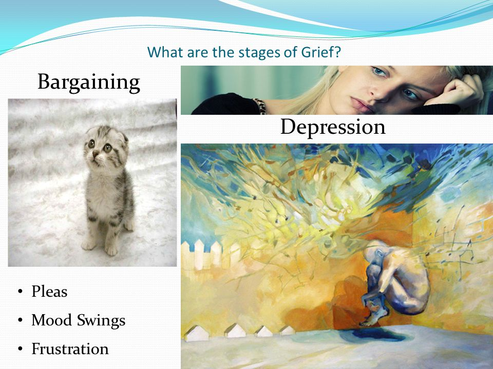 What are the stages of Grief? Denial (Isolation) Anger
