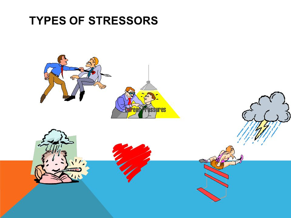 TYPES OF STRESSORS Career Pressures