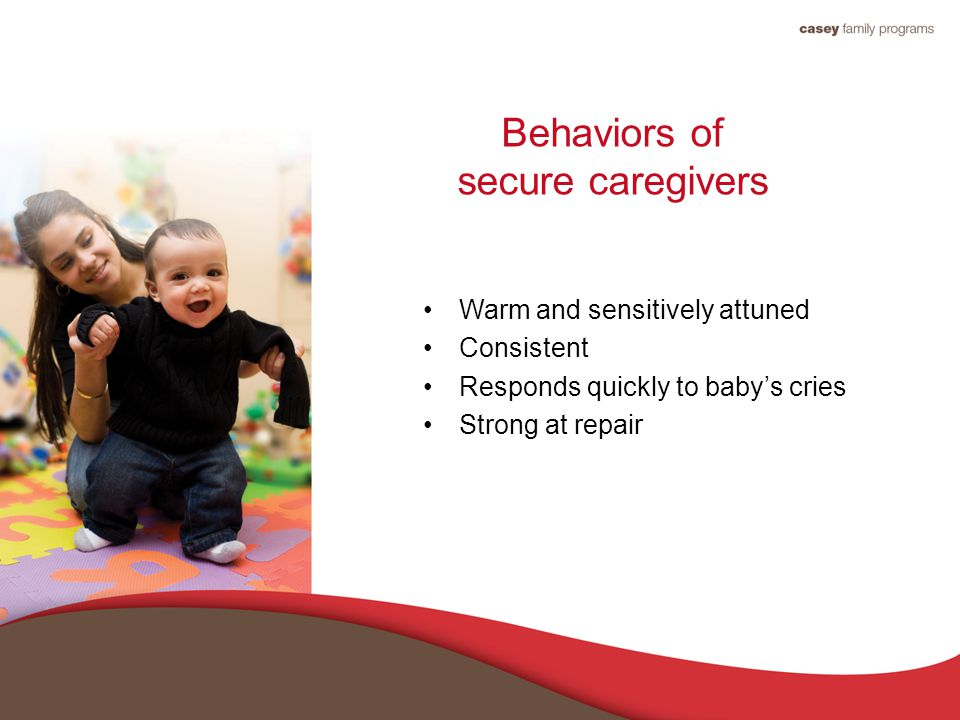 Behaviors of secure caregivers Warm and sensitively attuned Consistent Responds quickly to baby's cries Strong at repair