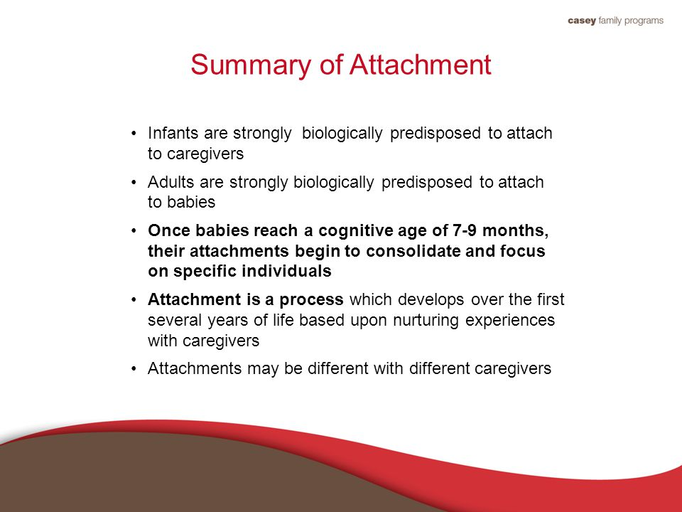 Summary of Attachment Infants are strongly biologically predisposed to attach to caregivers Adults are strongly biologically predisposed to attach to babies Once babies reach a cognitive age of 7-9 months, their attachments begin to consolidate and focus on specific individuals Attachment is a process which develops over the first several years of life based upon nurturing experiences with caregivers Attachments may be different with different caregivers