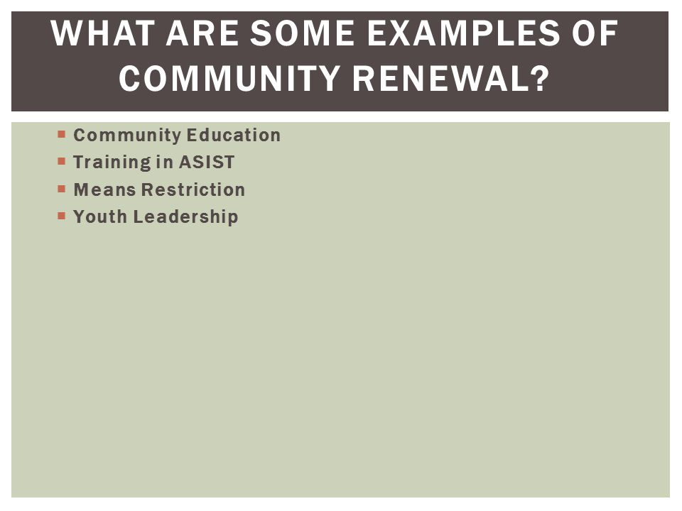 WHAT ARE SOME EXAMPLES OF COMMUNITY RENEWAL?  Community Education  Training in ASIST  Means Restriction  Youth Leadership