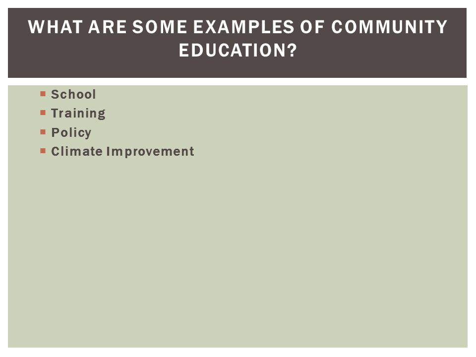 WHAT ARE SOME EXAMPLES OF COMMUNITY EDUCATION?  School  Training  Policy  Climate Improvement