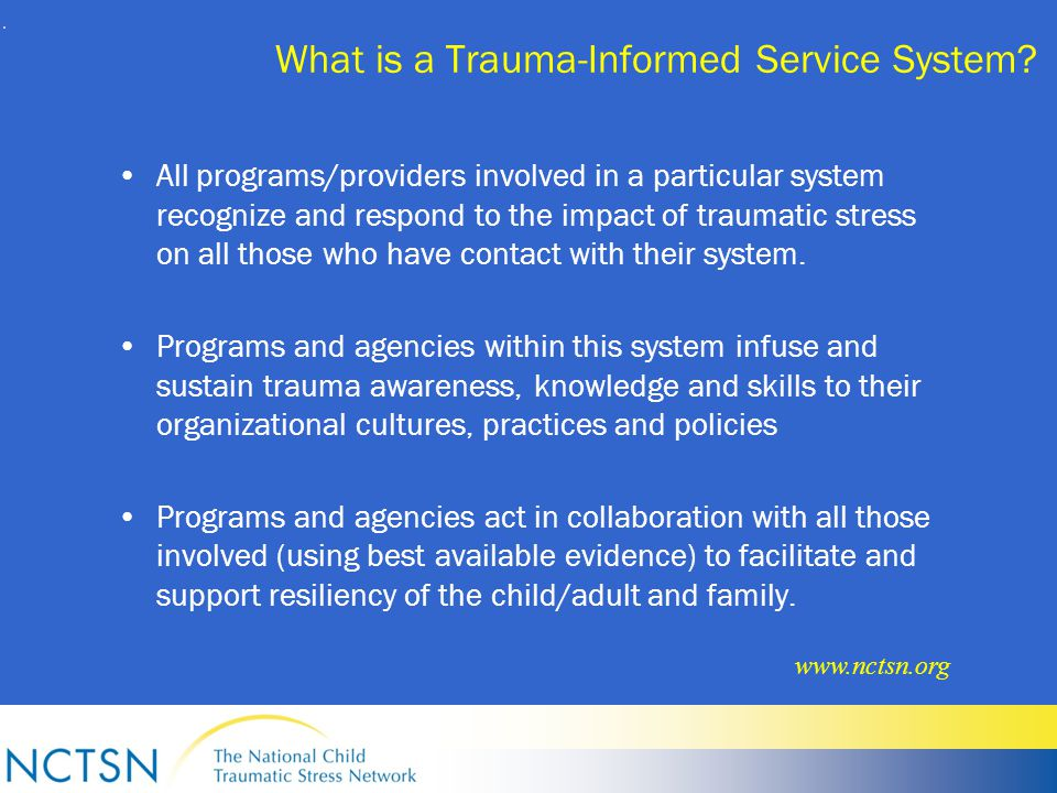 What is a Trauma-Informed Service System.