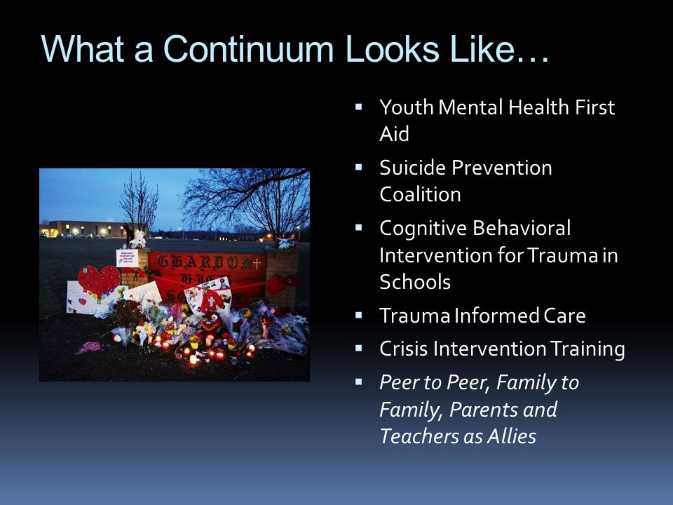 What a Continuum Looks Like…  Youth Mental Health First Aid  Suicide Prevention Coalition  Cognitive Behavioral Intervention for Trauma in Schools  Trauma Informed Care  Crisis Intervention Training  Peer to Peer, Family to Family, Parents and Teachers as Allies