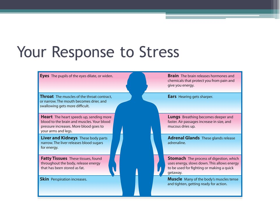 Your Response to Stress
